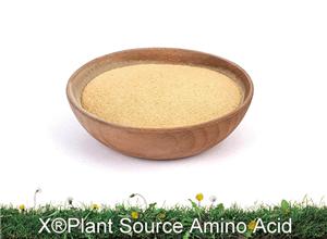 X®Amino acid (Plant Source)
