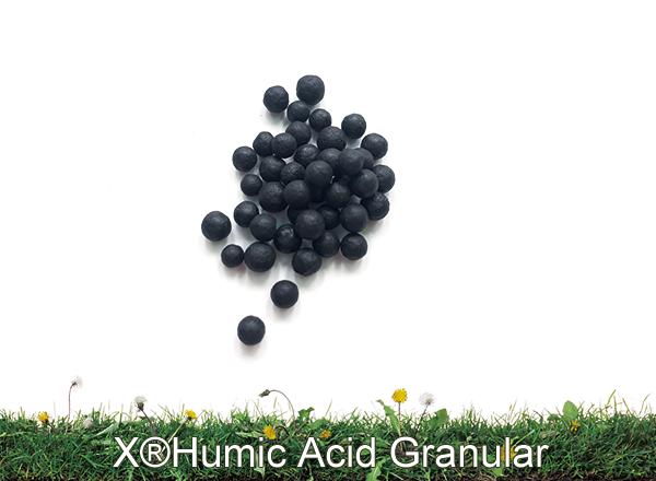 X®Humic acid Granular